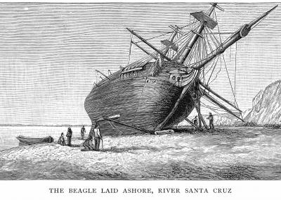 HM Beagle laid ashore